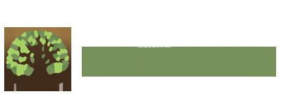 options-outpatient-logo